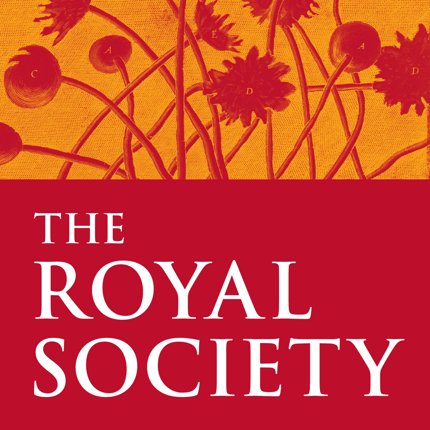 History of science | Royal Society